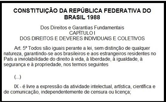 constituição art. 5